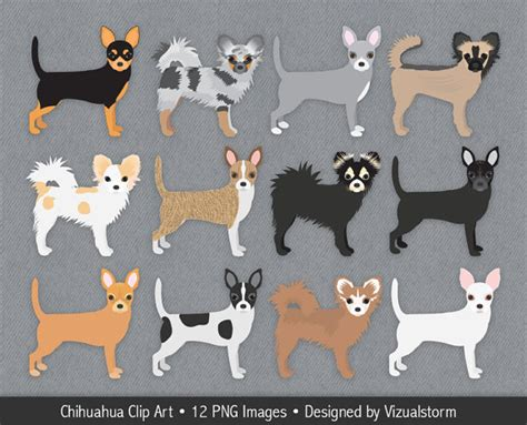 Merle clipart 20 free Cliparts | Download images on