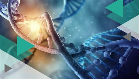 6 Best DNA Test for Health In 2020: The Medical Edition