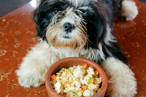 How to Make Simple Gluten Free Dog Food: 6 Steps (with